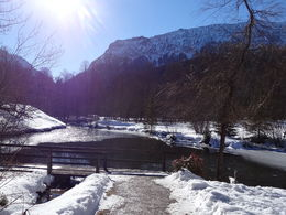 Beautiful arriving in Linderhof Castle , Sandra L - February 2015