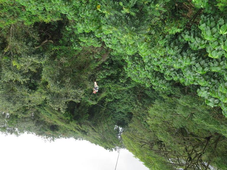 Upside down view of the treetops on the Kipu Zipline - Kauai