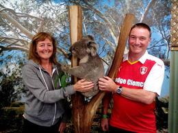 Jill and Martin with a koala , martin.aizlewood - February 2017
