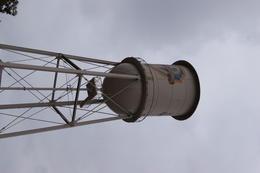 Warner Brothers water tower , Gino C - September 2017