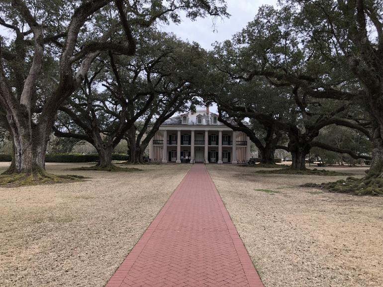 Oak Alley Plantation Tour photo 13