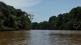 Amazon like water 1 , Bipin K - August 2016