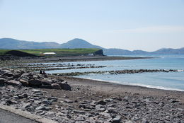 Waterville Ireland , Norman V - July 2015