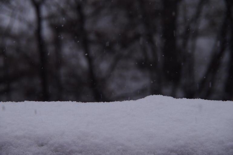 Snowing - Tokyo