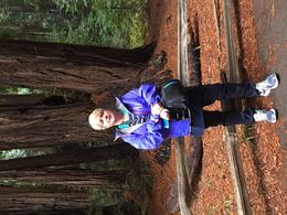 My wife at Muir woods , Gavin O - January 2017