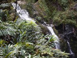 The Upper Waikani Falls on The Road to Hana , children - January 2017