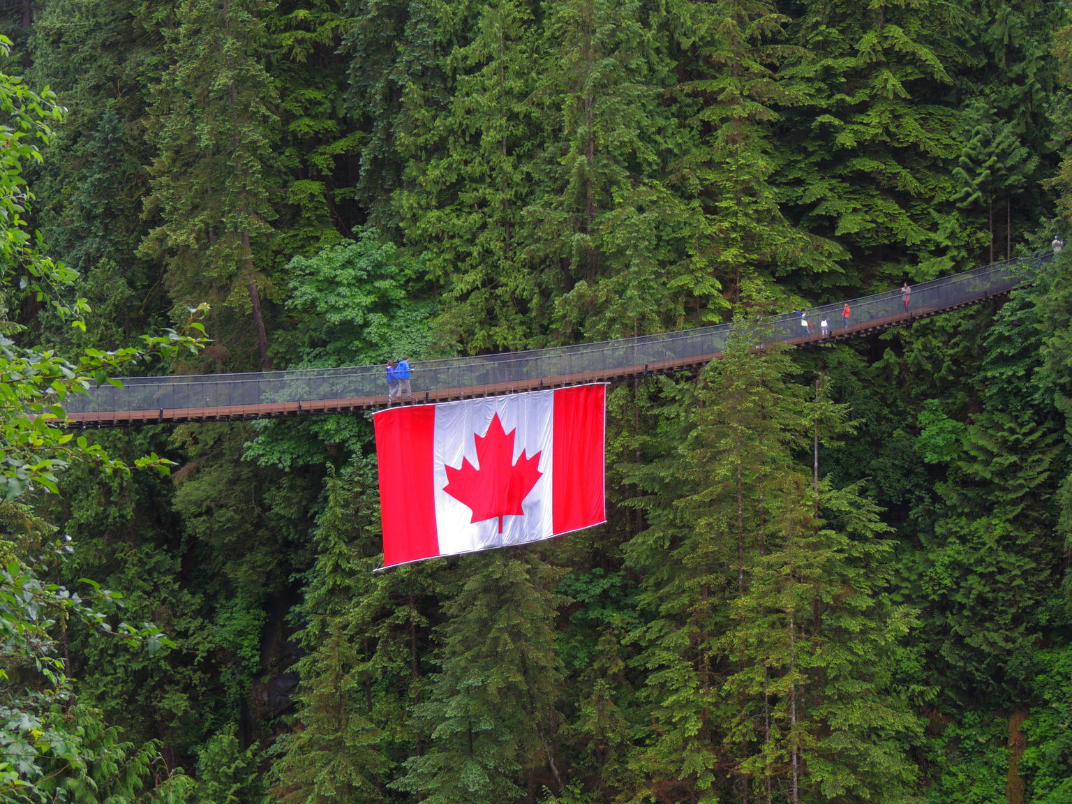 MAIS FOTOS, North Shore Day Trip from Vancouver: Capilano Suspension Bridge & Grouse Mtn