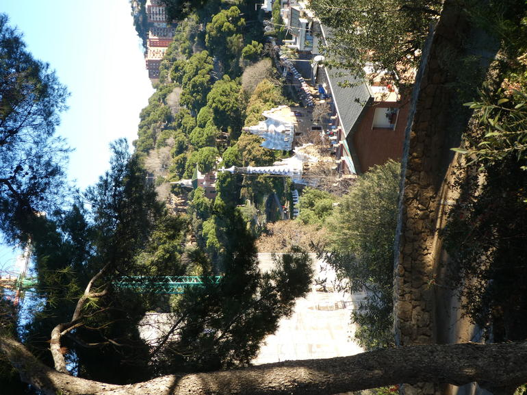 Fast Track Access to Park Guell