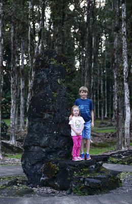 Lava trees , reneecornaga - October 2013