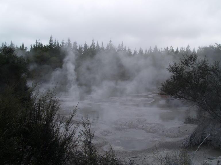Mud Pools! - Rotorua