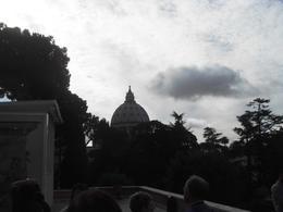 Jardins du Vatican , Robert D - November 2013