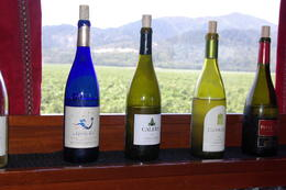Some of the wine sampled! , Sharon L - September 2013