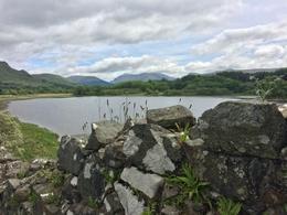 one of many views from Kilchurn Castle , Cecelia K - July 2017
