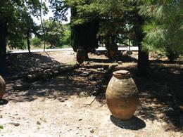 ruins in Troy, Dario M - July 2014