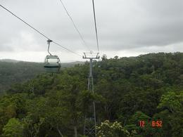 Awesome views over the top of the rain forest., Patricia J - November 2007