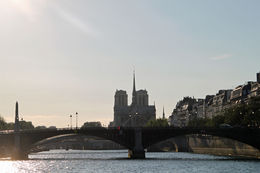 View of the Notre Dame from the river cruise , Deborah B - August 2015
