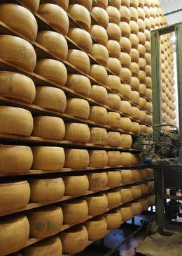 Cheese in storage and bein rotated, turned and placed back onto the racks to continue aging. , SAMUEL A - September 2015