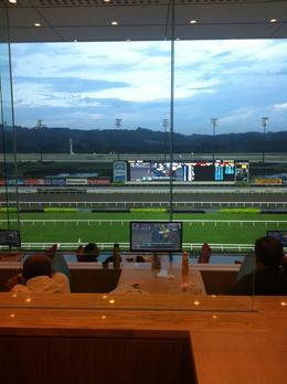 Singapore races , JENNIFER K - May 2013