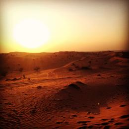 sunset 4x4 desert tour , Alexander P - November 2014