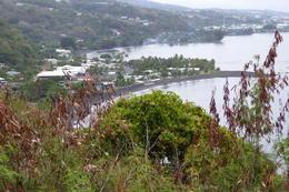 Taharaa View Point , Neville B - October 2017