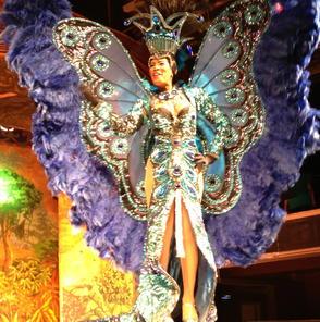 Photo of Río de Janeiro Espectáculo de samba Plataforma Show en Río de Janeiro gorgeous costume