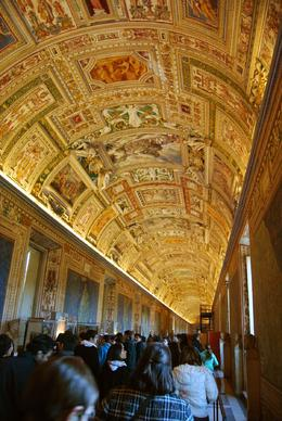 Taken during our tour. Quite apart from the colorful frescoes depicting early maps, the ceiling was truly breathtaking. Stopping to take the picture did not mean losing any of the commentary of our ... , James P - January 2009