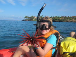 Our daughter with a sea urchin. , Richard L - February 2013