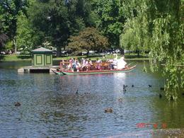 Swan Boats, Public Gardens - June 2011