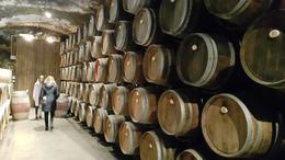 1st winery cellar , Luisa H - January 2017