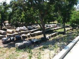 Columns in Troy, Dario M - July 2014