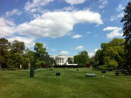 April 10 2012, blue sky and fluffy white clouds over DC , Michael C - April 2012
