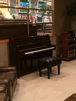 I don't want to give anything away, but when you walk through this piano PAY ATTENTION TO THE IPAD!!! It has major significance! , Karen B - June 2016