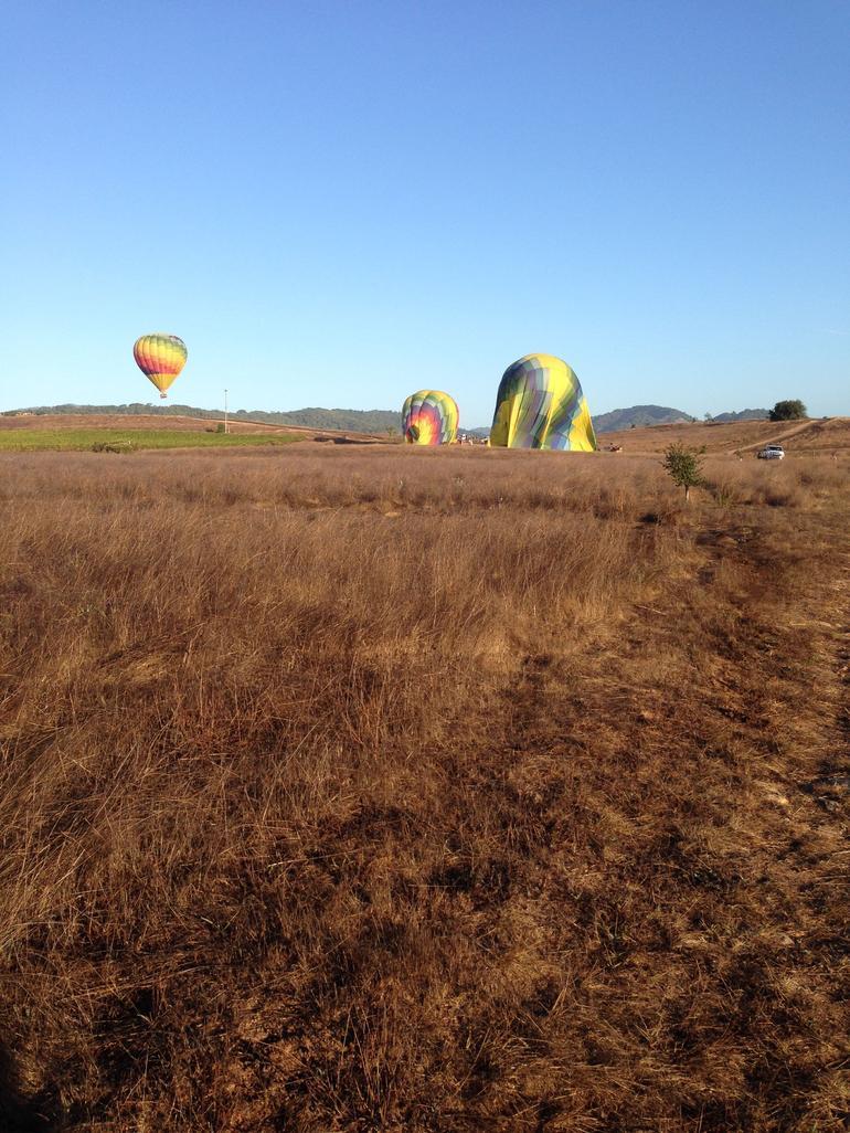 Landed - Napa & Sonoma