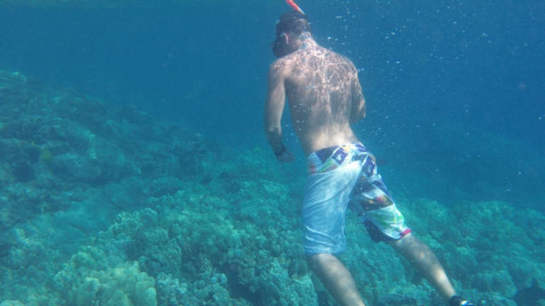 Snorkeling - Big Island of Hawaii