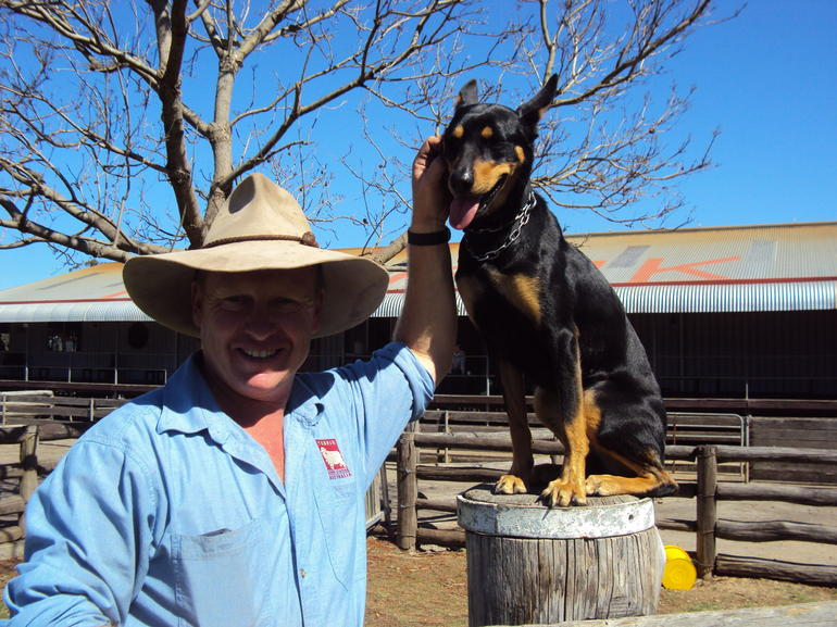 Stockman with cattle dog - Sydney