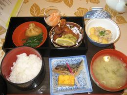 Beautiful lunch that really hit the spot after a long drive to Mt Fuji., Grant W - February 2009