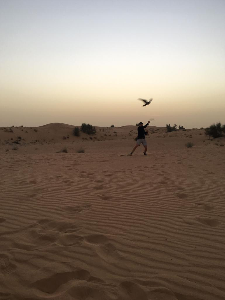 Camel Desert Safari with Traditional Dinner & Heritage Activities from Dubai