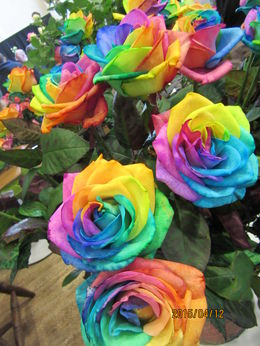 Multi-coloured roses! , Stef - July 2015