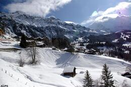 View from the cog-wheel train. Exact location unknown, but the Alps, snow, and sky are simply breath-taking., Gary G - March 2009