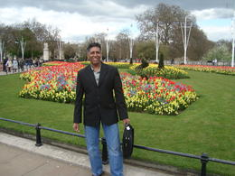 Beautiful flowers in front of the Buckingham Palace , Vinayen C - May 2013
