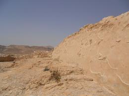 the Judean desert - August 2010