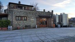 2nd winery , Luisa H - January 2017