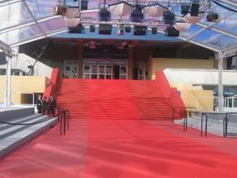 Photo of the red carpet, David S - June 2010