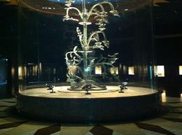 The largest money tree , John J - June 2012