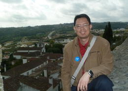 In Obidos, you can climb and wall. This will give you a very good view of the town below. , Patrick S - September 2014