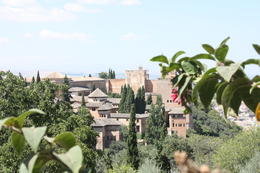 View of the Alhambra from the Generalife Gardens, SCV - December 2012