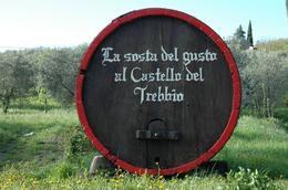 Nice details outside Castello del Trebbio., Jon B - April 2008