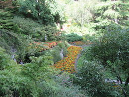 Sunken Garden , Sheryl K T - August 2017