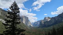 Yosemite National Park , Abhishek - September 2017
