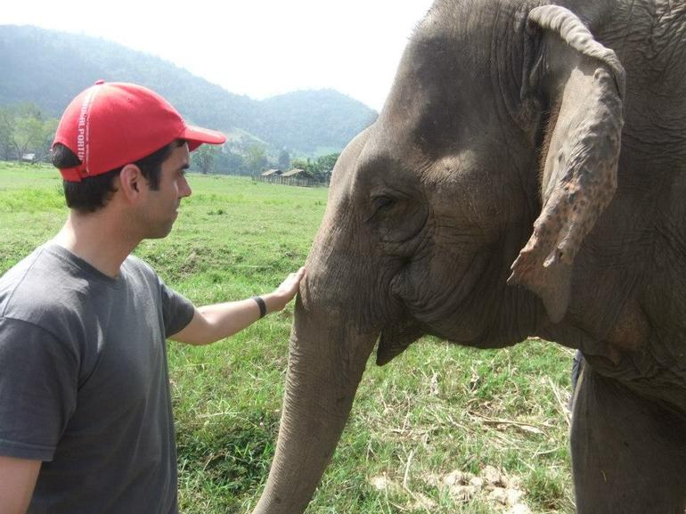 Elephant Conservation Center - Chiang Mai